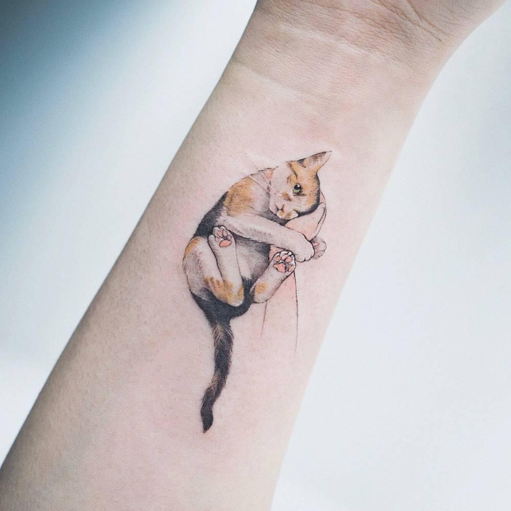 img 5aa41ddd966fd 20 Tatuajes de Felinos