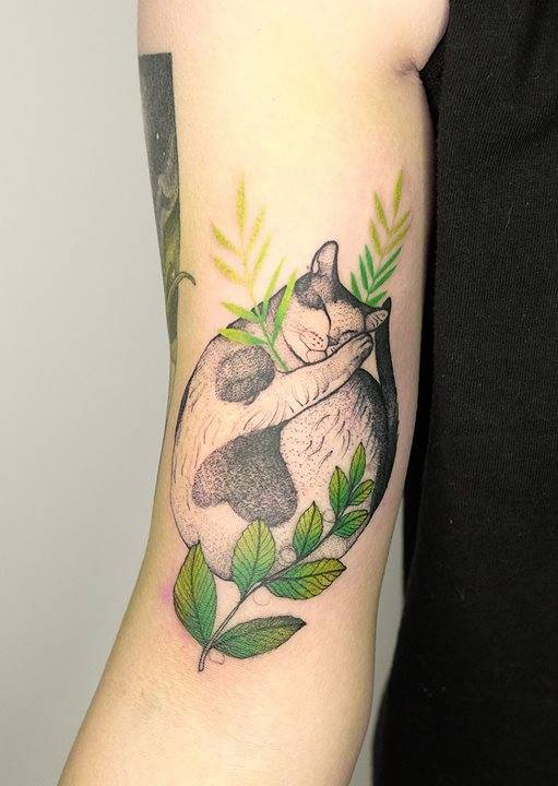 img 5aa41fb080277 20 Tatuajes de Felinos