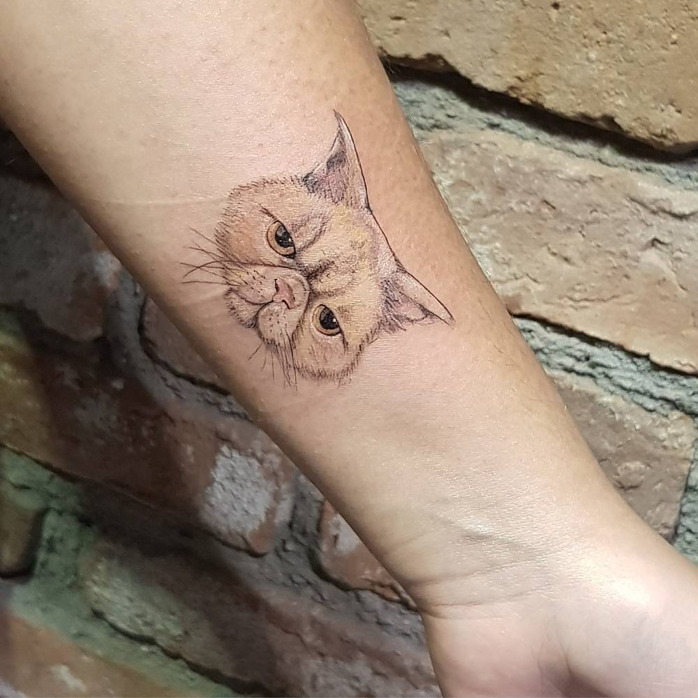 img 5aa4204311cbd 20 Tatuajes de Felinos